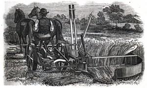 fauchage 1864 tiré d'une gravure